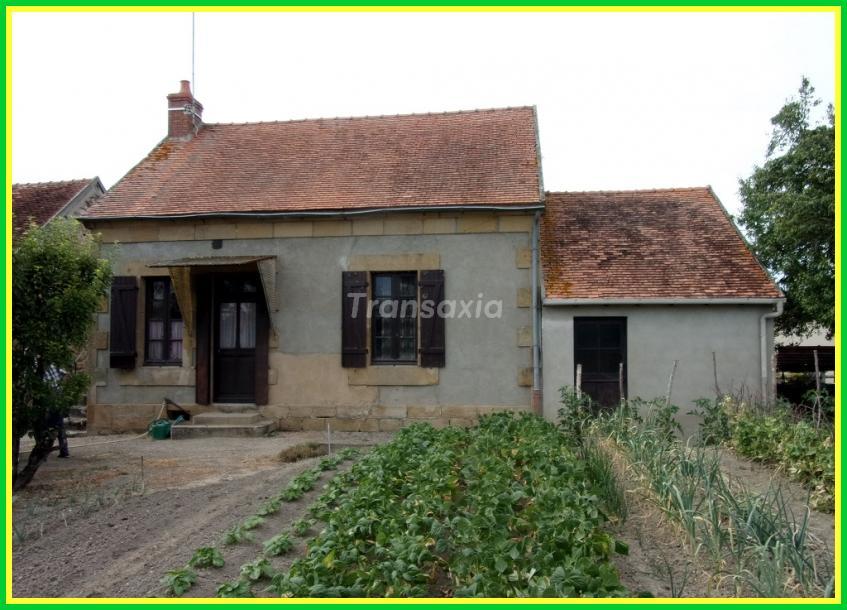 2 maisons sur 3 hectares