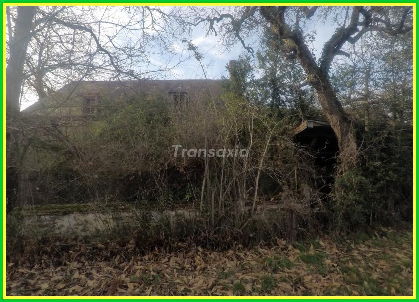 Maison avec 7 hectares