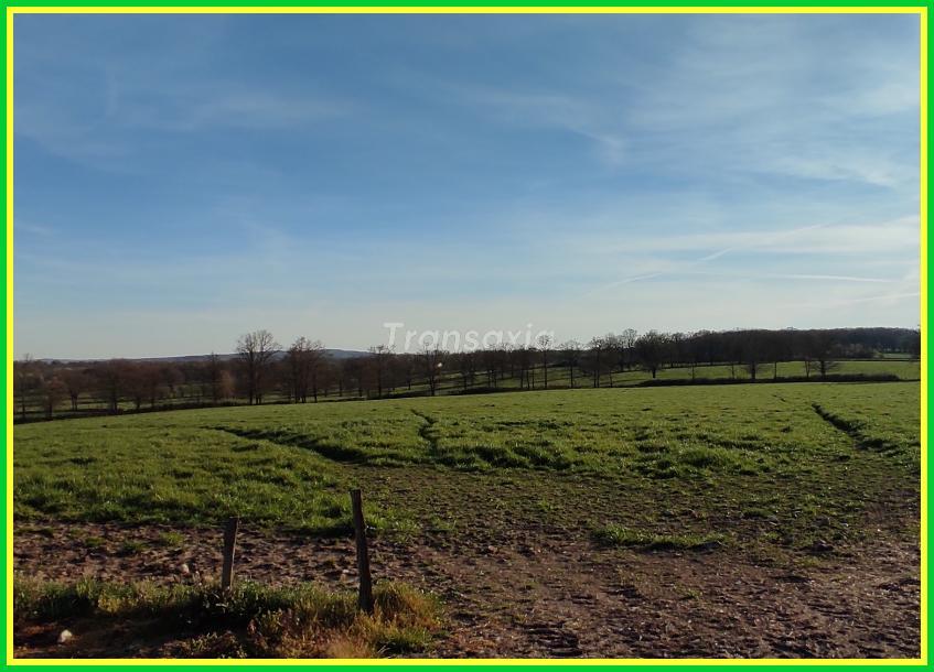 Ferme de 13 hectares