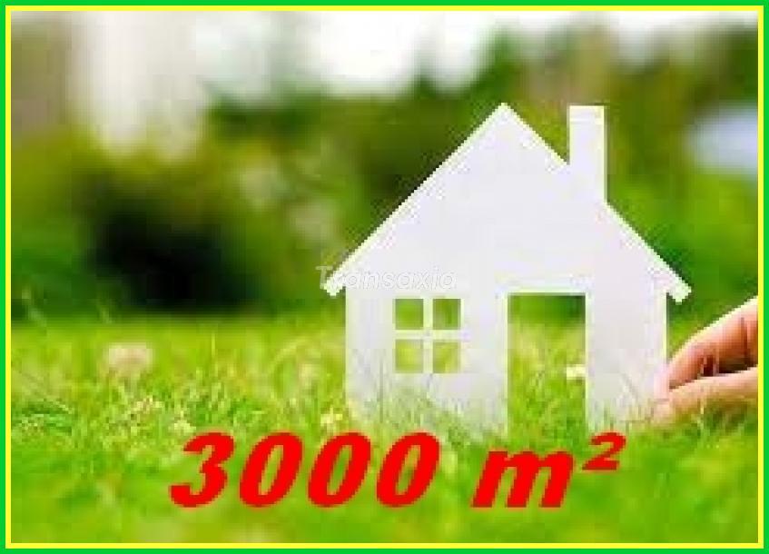 Terrain à bâtir 3000m²