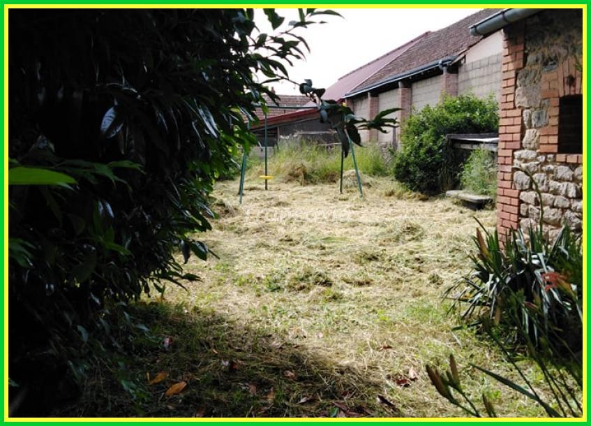 Maison de bourg + jardin