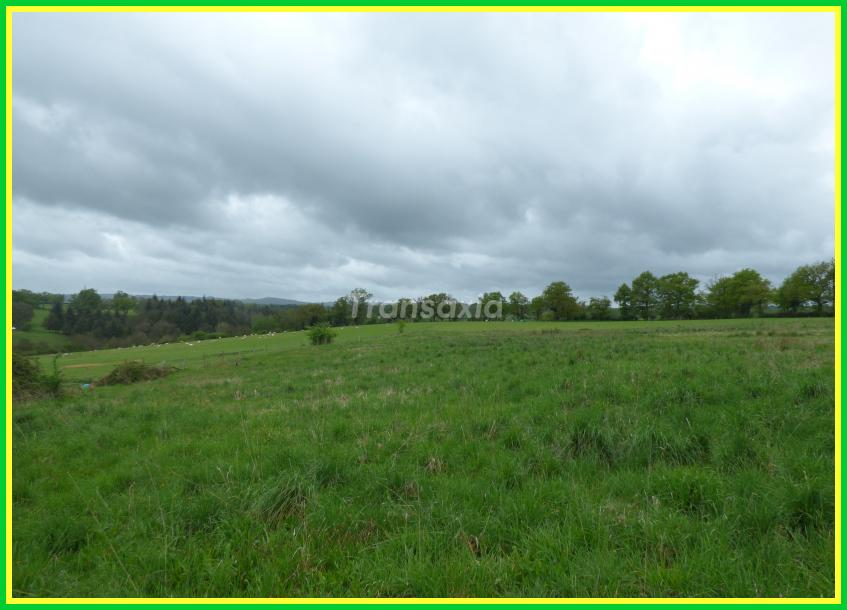 Longère + 3 hectares !