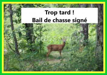 Chasse à louer 50 hectares