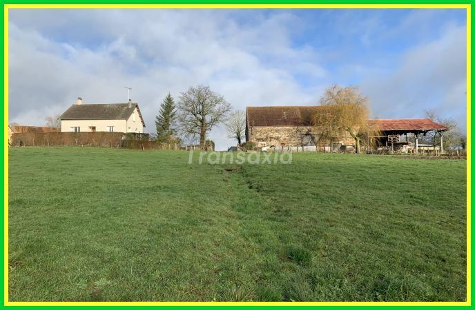 Corps de ferme +4 hectares